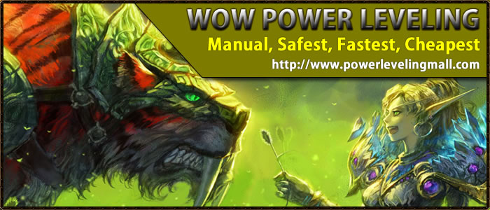 Buy Hand-made Cheap WoW Power leveling Service